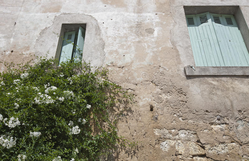 Low angle view of stone wall house with flower plant growing in foreground royalty free stock image