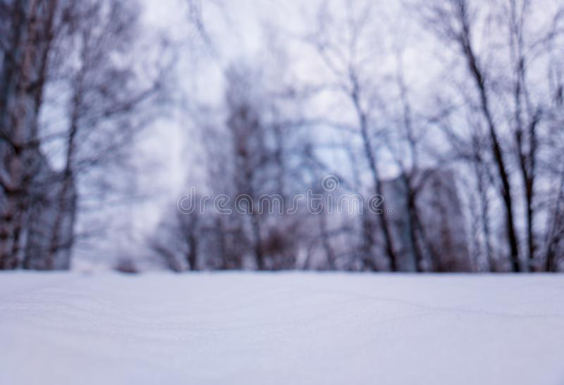 Low angle view of winter park with dramatic bokeh background stock image