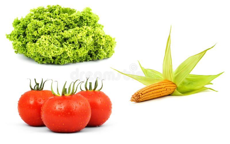 Low-calorie raw vegetables royalty free stock photos