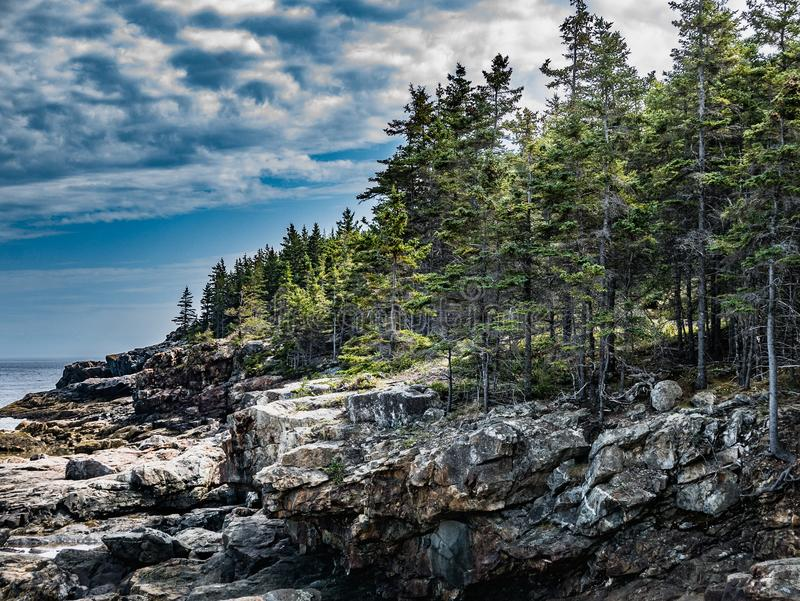 Low Cliffs of Great Head, Acadia National Park. Volcanic rock remains form the cliffs of Great Head in Mount Desert Island`s Acadia National Park royalty free stock photography