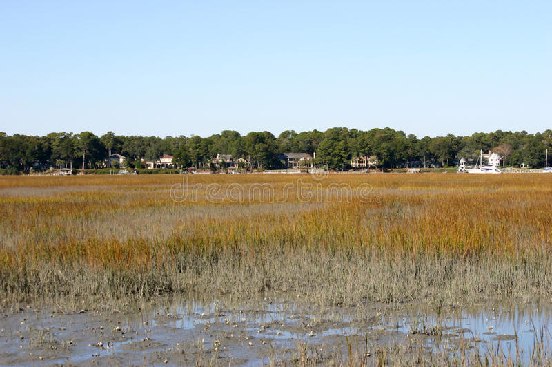 Low Country stock photos