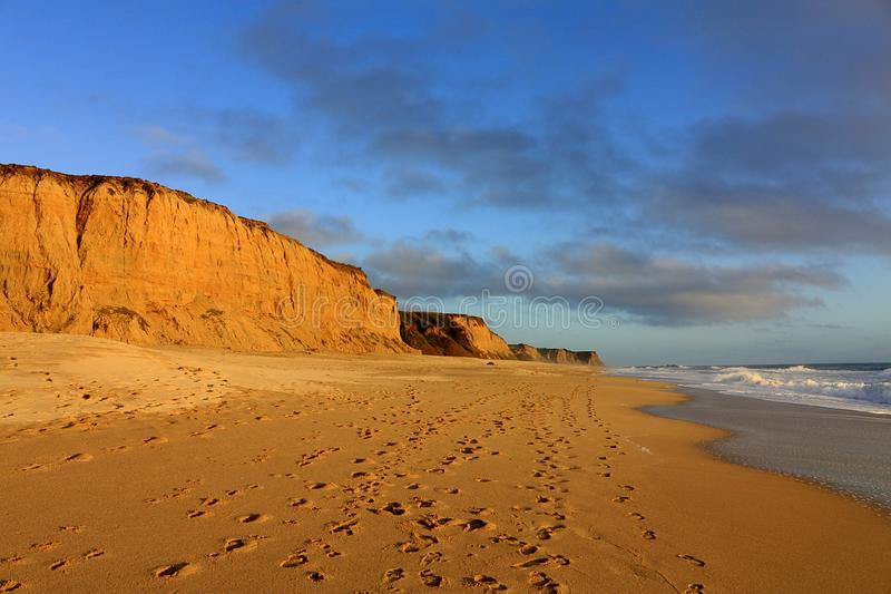 Poplar Beach State Park in Golden Evening Light, California. The low evening sun is bathing the empty Poplar Beach and the sandstone cliffs in a golden evening royalty free stock photography