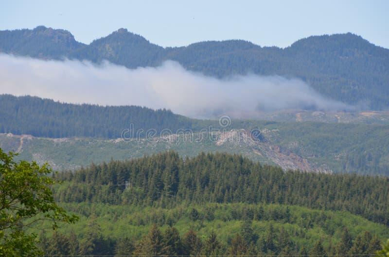 Low Hanging Mist in the Coast Range, Oregon royalty free stock image