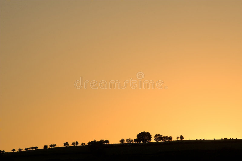 Low horizon with trees on hill royalty free stock images
