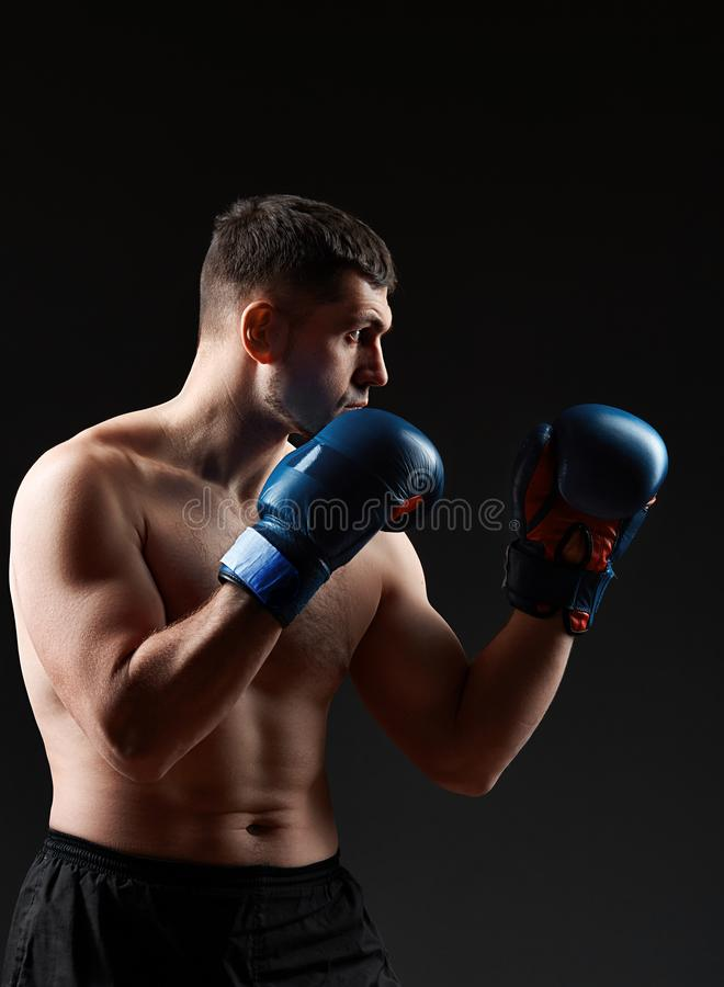 Low key studio portrait of handsome muscular fighter practicing boxing on dark blurred background royalty free stock image