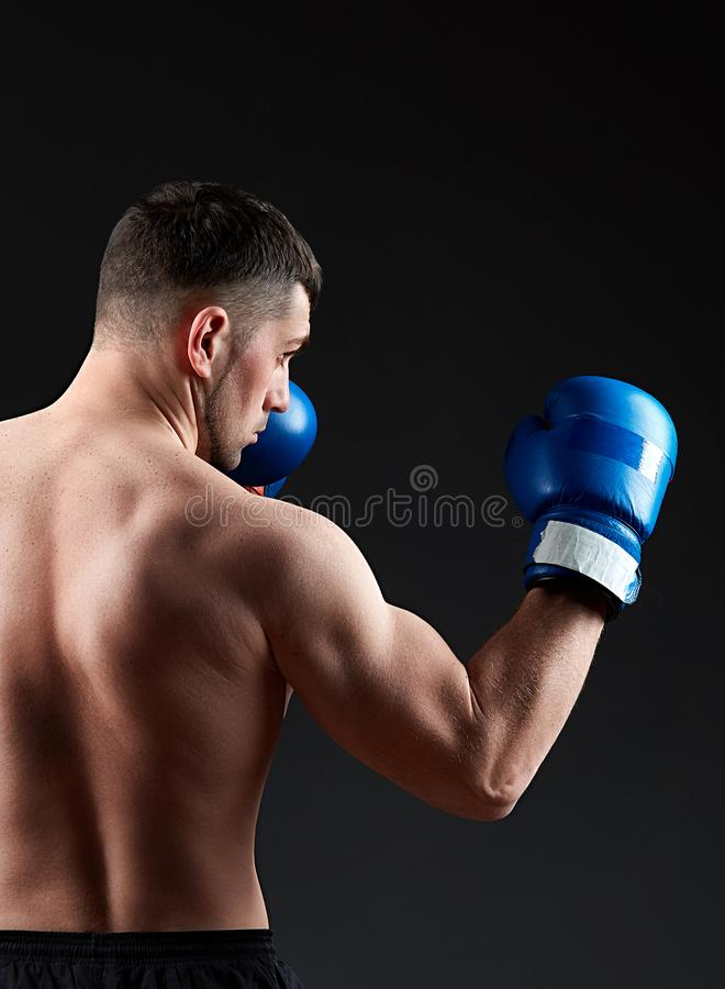 Low key studio portrait of handsome muscular fighter practicing boxing on dark blurred background royalty free stock images