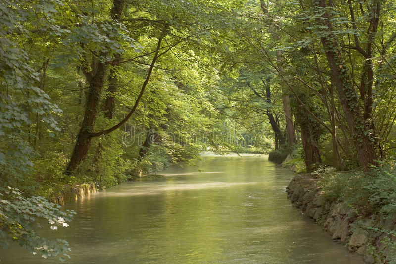 Download Low Light Over Wood And Stream Stock Photo - Image: 15209030