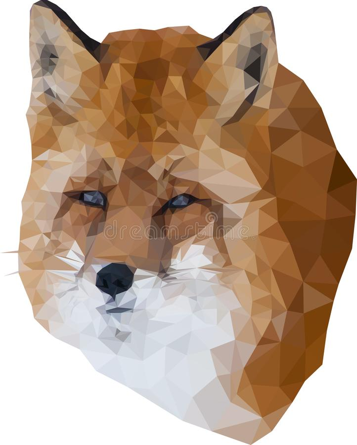 Low poly fox royalty free stock image