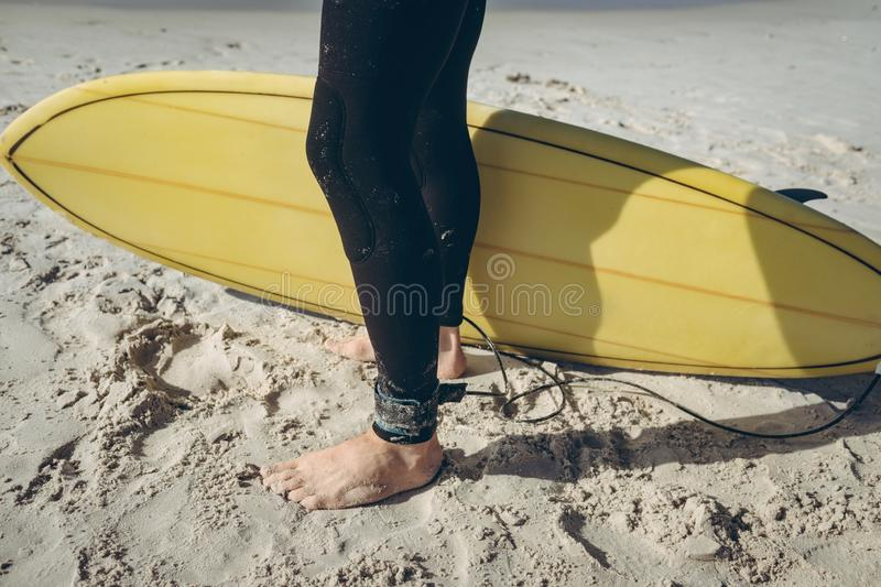 Male surfer standing on sand at beach stock photos
