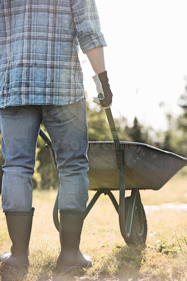 Low section rear view of man pushing wheelbarrow at garden. Low section rear view of men pushing wheelbarrow at garden royalty free stock images