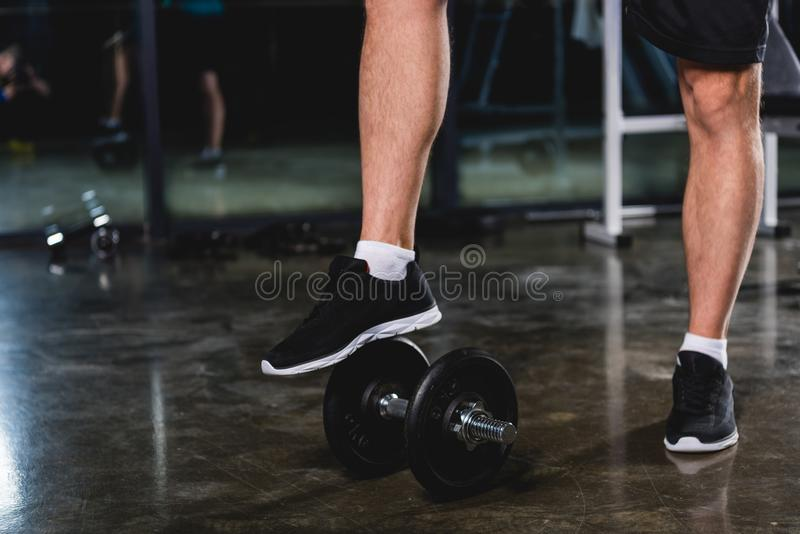 Low section view of sportsman. Standing with dumbbell in sports hall stock images