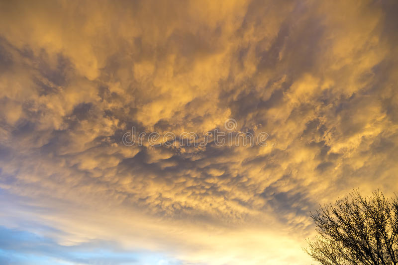 Low stormy clouds lit up deep gold and orange by the sunset stock photography