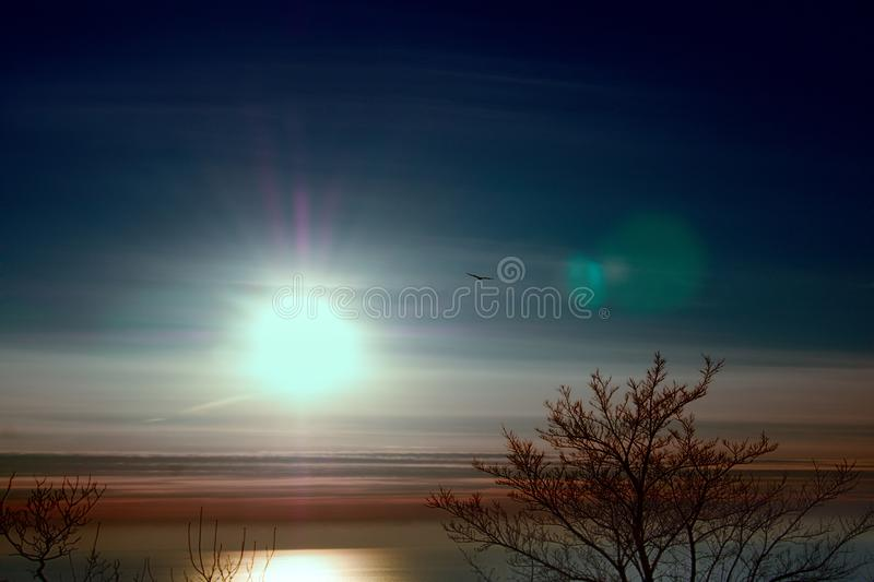 Low sun over winter Mediterranean sea. Low sun (mid winter day, winter solstice) over winter Mediterranean sea with sunny glade and bird stock photo