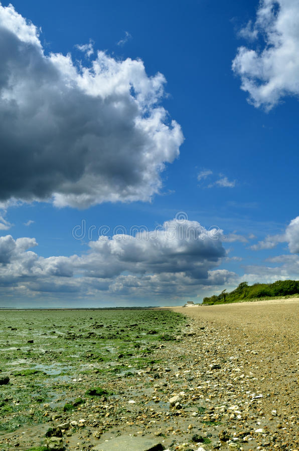Download Low Tide stock photo. Image of rocks, green, stones, tidal - 24893108