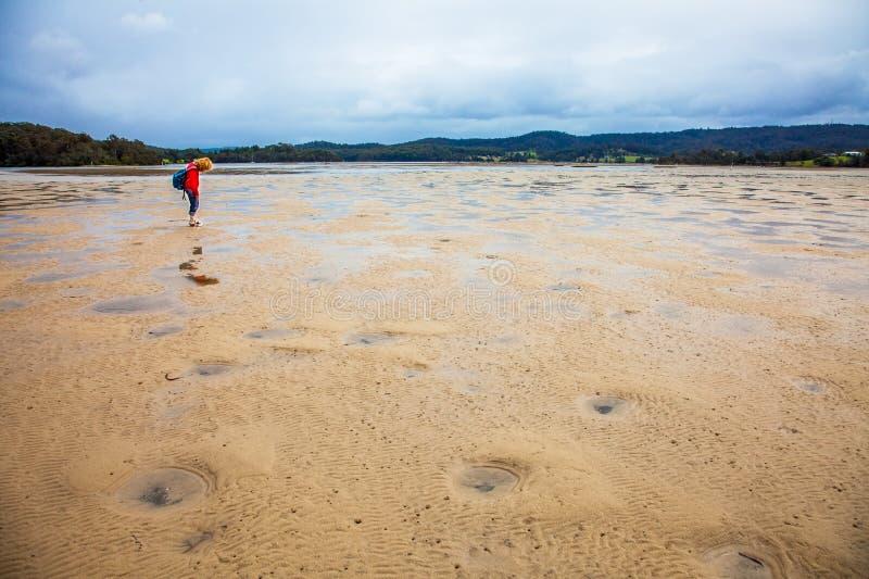 At low tide bij Wallaga-Meer in Narooma Australië stock foto