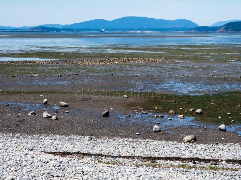 Low tide coastal scenery at Bay View State Park, WA, USA stock image