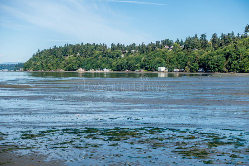 Low Tide At Dash Point 3 stock photo