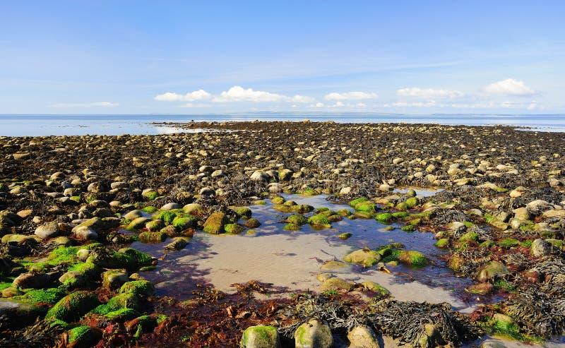 Low tide, Luce bay, Scotland stock image