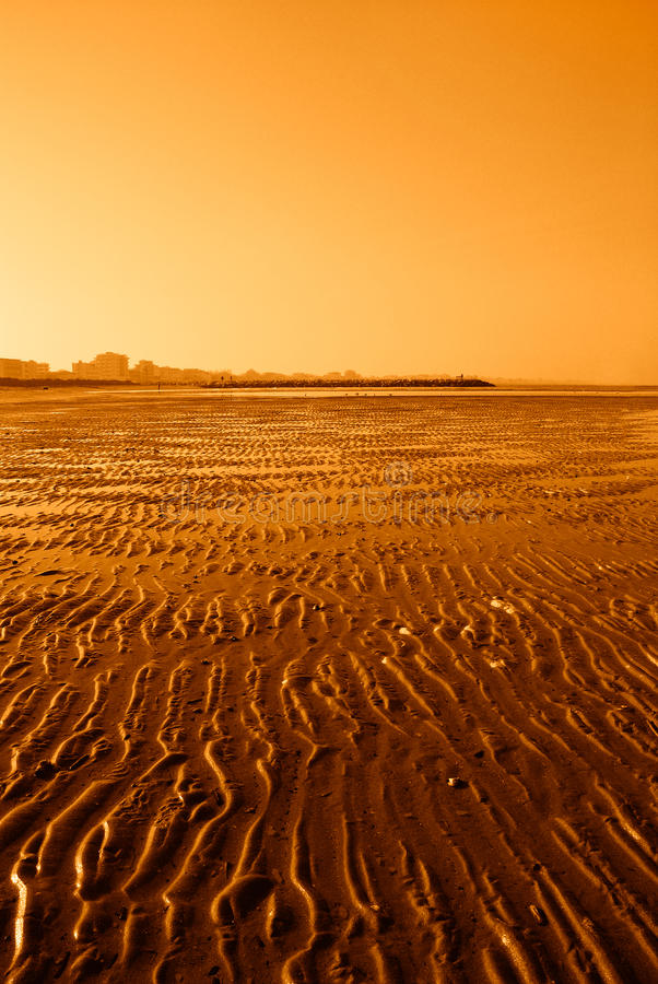Download Low tide stock photo. Image of scenic, island, bright - 34256970