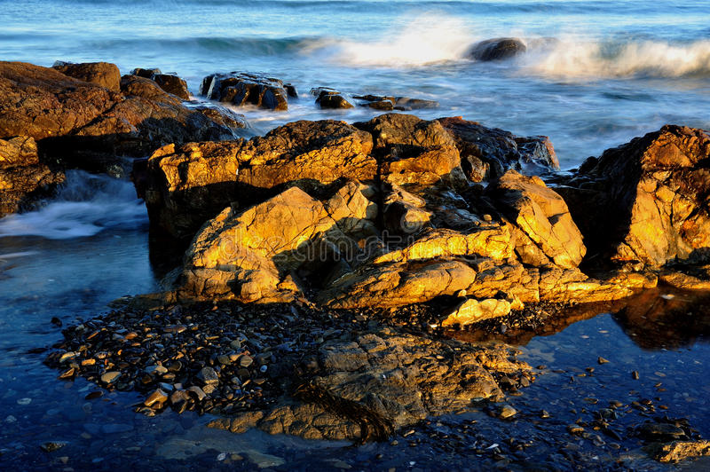 Low tide rocks on the new england coast at sunset royalty free stock image