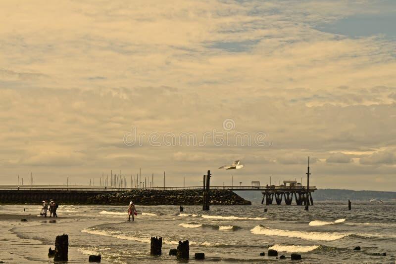 Low Tide Scene stock photo