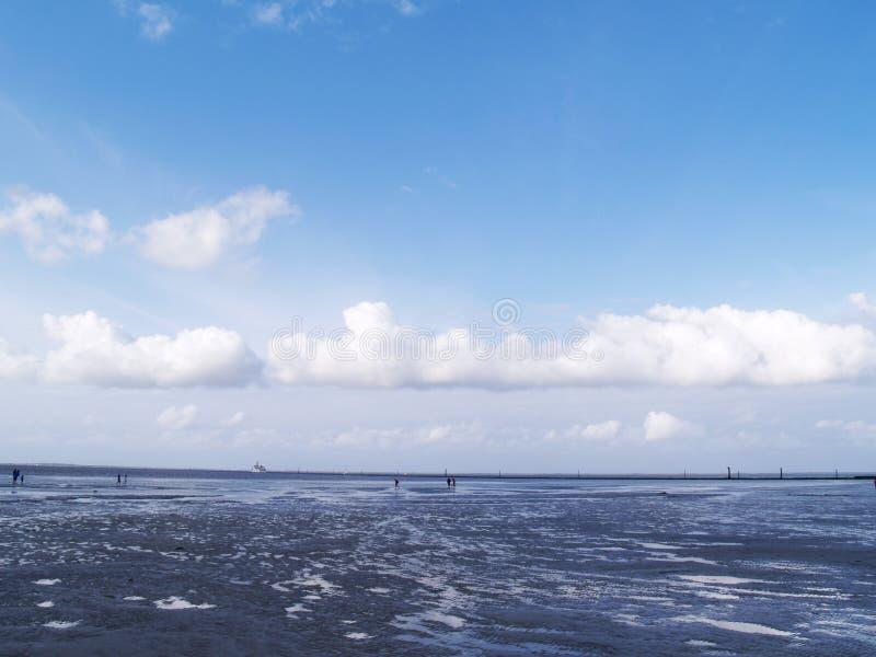 Download Low tide tideland stock image. Image of falling, mudflat - 11007693