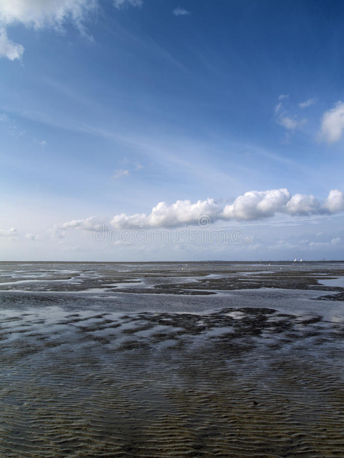 Free Low Tide Tideland Royalty Free Stock Images - 11359619