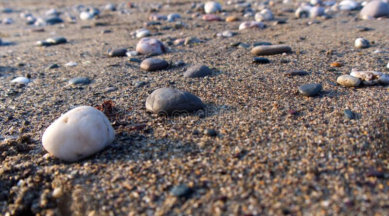 Low view across a warm sandy beach with pebbles and low evening sun royalty free stock image