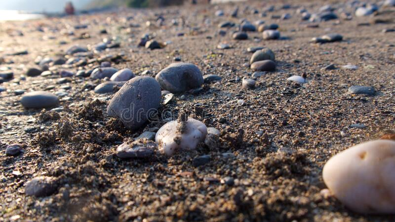 Low view across a warm sandy beach with pebbles and low evening sun stock images