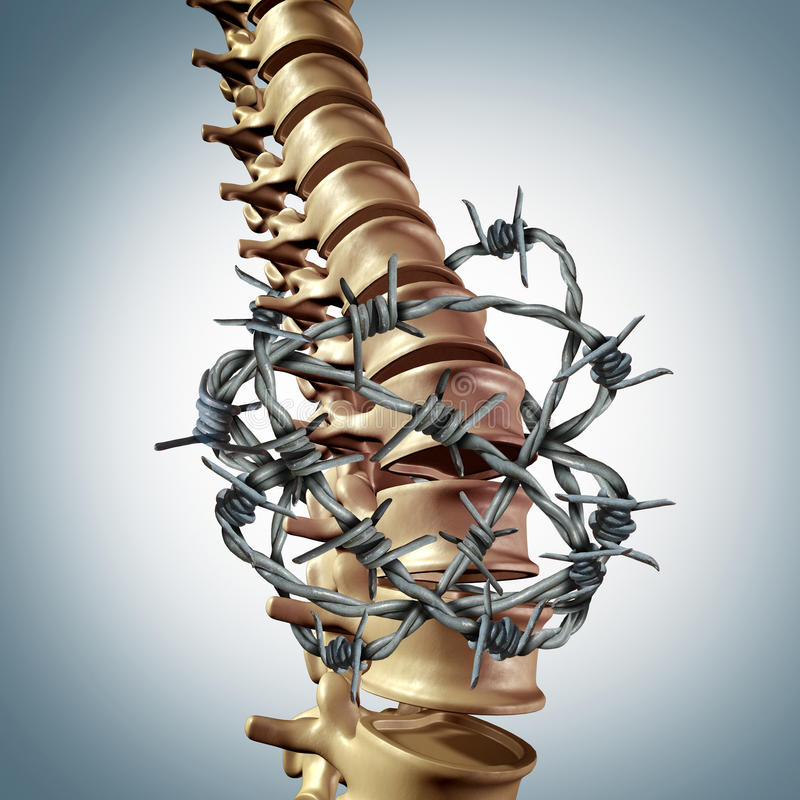 Lower Back Pain. Disease and human spinal backache with a three dimensional spinal body skeleton showing the vertebra and vertebral column wrapped in barbed or stock illustration