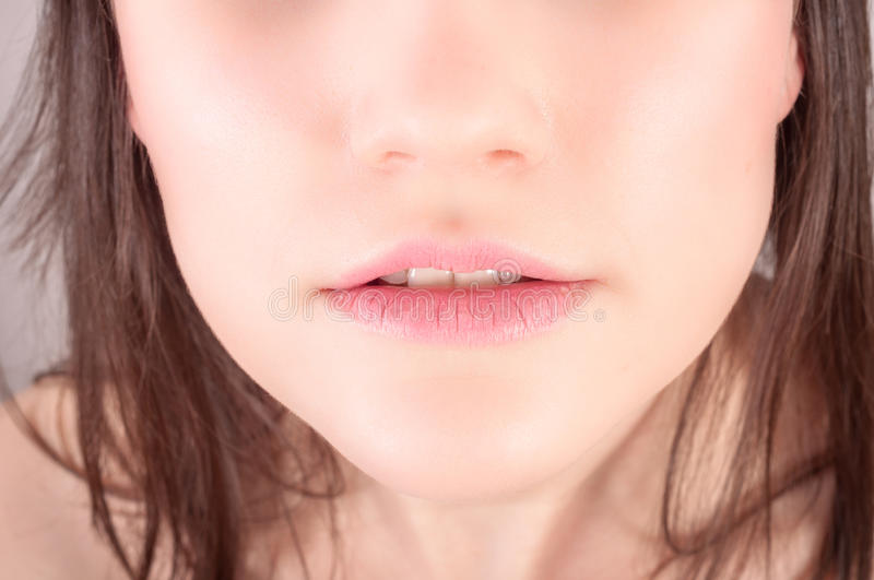 Lower face of a young woman. With brown hair royalty free stock photography