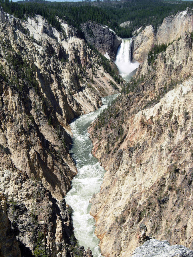 Lower fall in yellowstone royalty free stock photos
