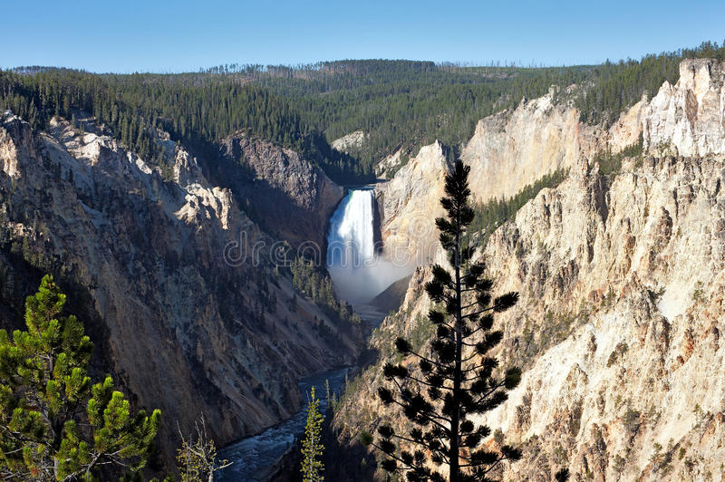 Download Lower Falls stock photo. Image of central, tree, grand - 22270972