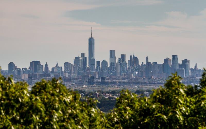 Lower Manhattan detrás de arbustos foto de archivo libre de regalías