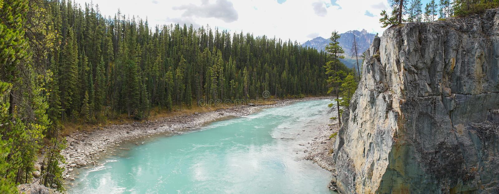 Lower River at Athabasca Falls in Jasper National Park, Canada. royalty free stock image