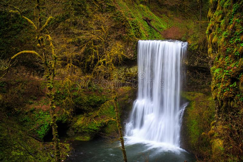 Lower South Falls at Silver Falls State Park photographie stock libre de droits