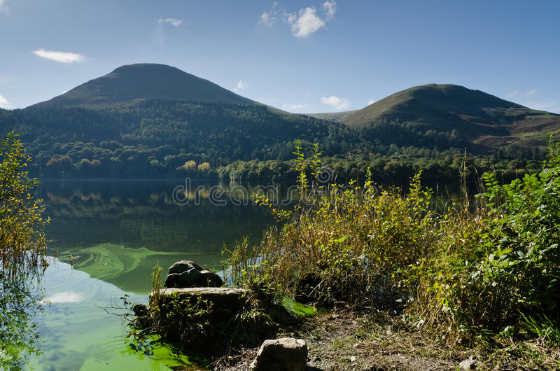 Loweswater algal bloom. Green algal bloom in Loweswater part of the English National Park Lake District stock photography