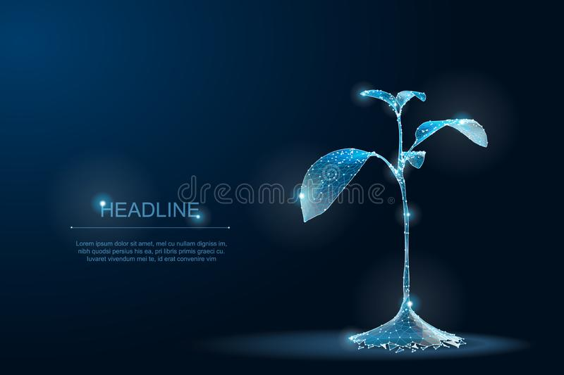 LowPoly Plant polygonal 3D Eco. Sprout ecological abstract blueprint stock photos
