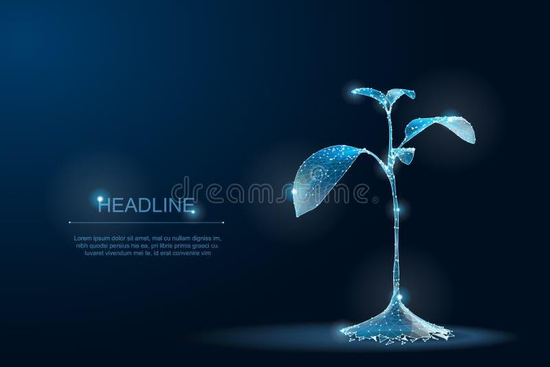 LowPolyinstallatie veelhoekige 3D Eco Spruit ecologische abstracte blauwdruk royalty-vrije illustratie