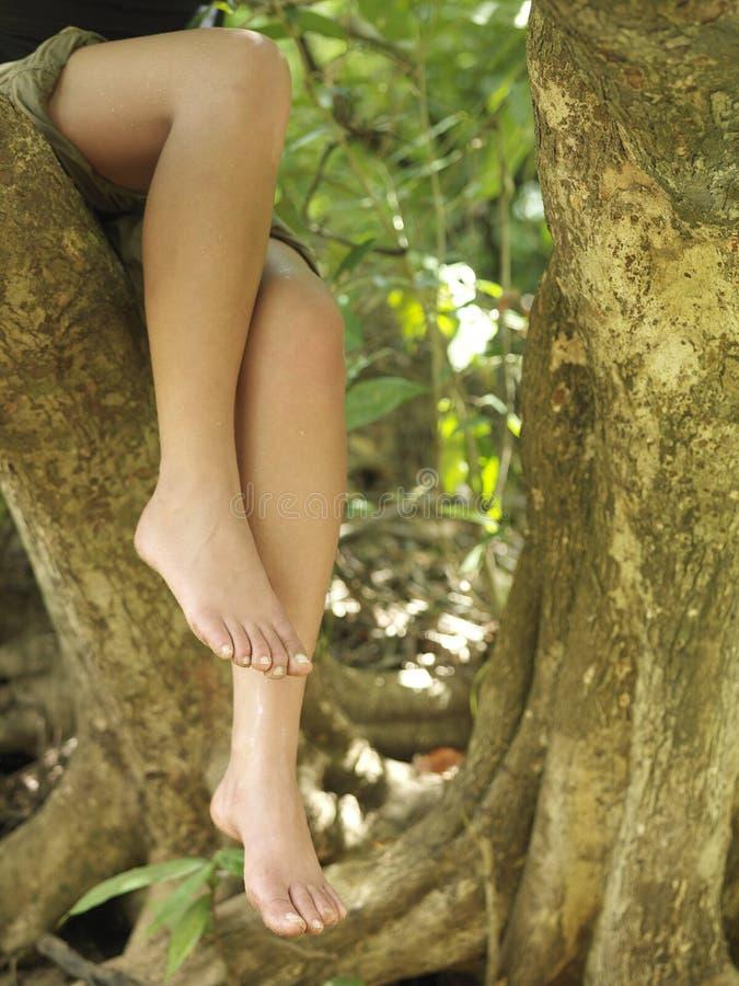 Lowsection της συνεδρίασης γυναικών Barefeet στον κλάδο δέντρων στοκ φωτογραφία με δικαίωμα ελεύθερης χρήσης
