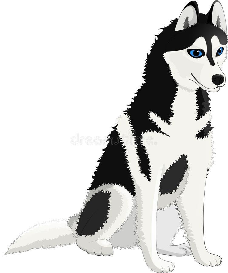 Loyal de laine blanche noire enrouée de chien bon illustration stock
