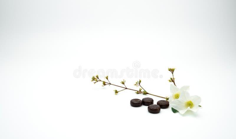 Lozenges фитотерапии для кашля сброса кладут около белого цветка и разветвляют с космосом экземпляра стоковое изображение rf
