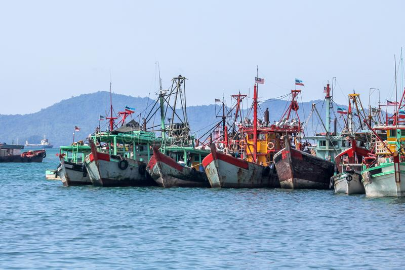 LRow των μαλαισιανών αλιευτικών σκαφών στον κόλπο κοντά σε Kota Kinabalu στοκ εικόνες με δικαίωμα ελεύθερης χρήσης