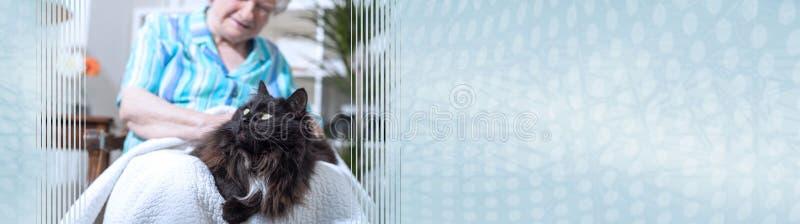 ?ltere Frau mit ihrem Haustier Panoramische Fahne lizenzfreie stockbilder