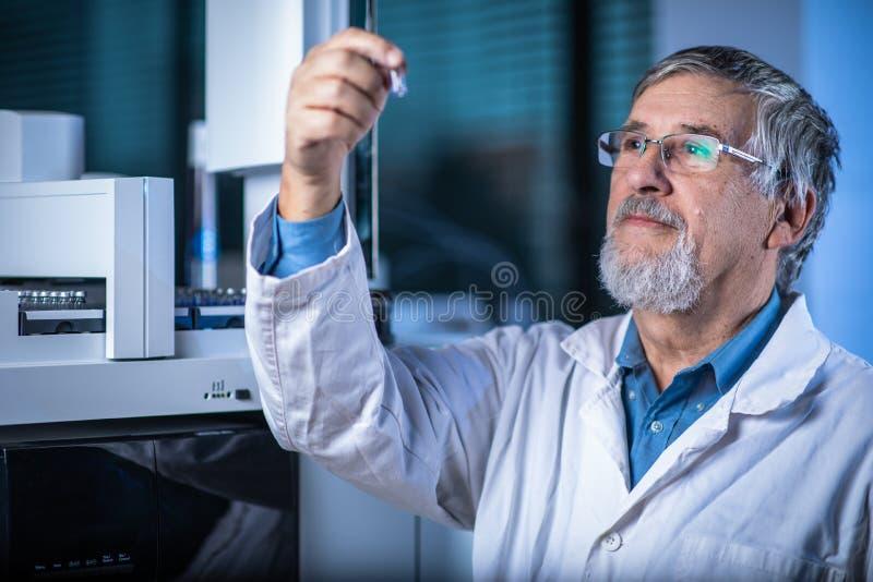?lterer Wissenschaftler in einer Chemielabordurchf?hrungsforschung - Betrachten von Gaschromatographieproben stockbild