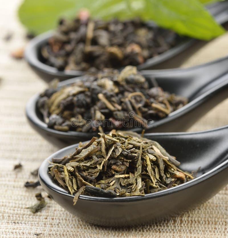 Luźna herbata fotografia royalty free