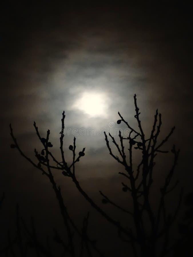Lua através das nuvens imagens de stock