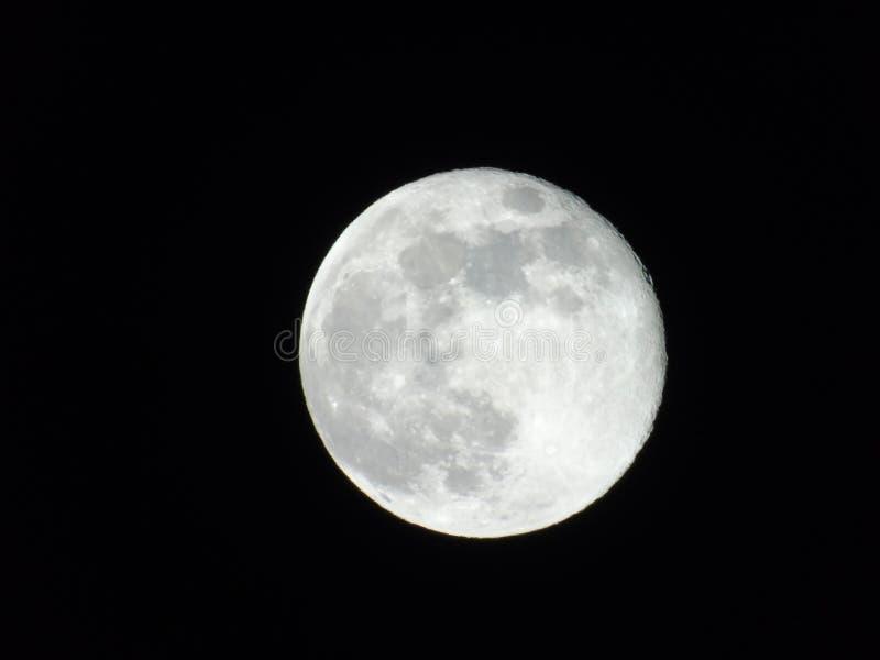 Lua cheia bonita da mola sobre a cidade ilustração do vetor