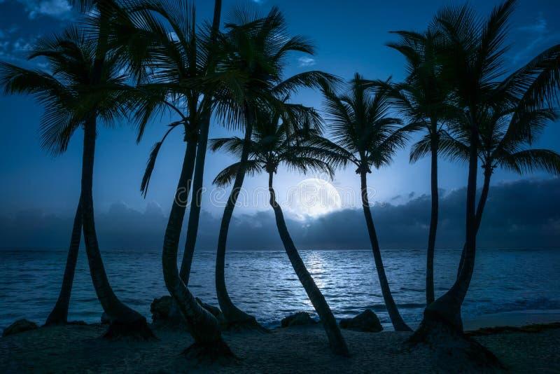 A Lua cheia bonita refletiu na água calma de uma praia tropical imagens de stock