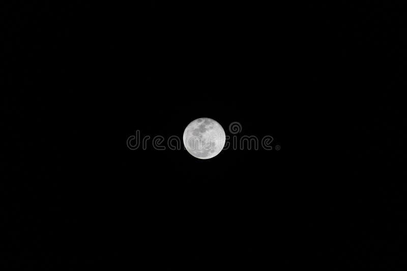 Lua cheia brilhante bonita fotografia de stock royalty free